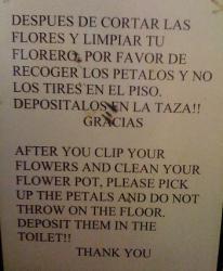 flores-de-tu-colita